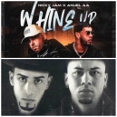 Nicky Jam Ft. Anuel x Wisin & Yandel - Whine Up x En La Disco Bailoteo - Intro Outro - Transition - 105-095Bpm - CarloKou