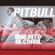 Pitbull - Maldito Alcohol - Dj Maicol Remix - House Redrums - Party Break Intro Outro - 128BPM - ER