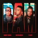 Justin Quiles ft DaddyYankee & Alfa - PAM - Kenny Flow - Intro breakdown & Open  - 2 Versiones
