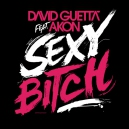 David Guetta Ft. Akon - Sexy Bitch - Original Remix - 130Bpm - DJCarloKou