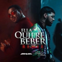 Anuell AA Ft Romeo  - Quiere Beber - Intro Remix - DJ Kenny Flow - 98Bpm